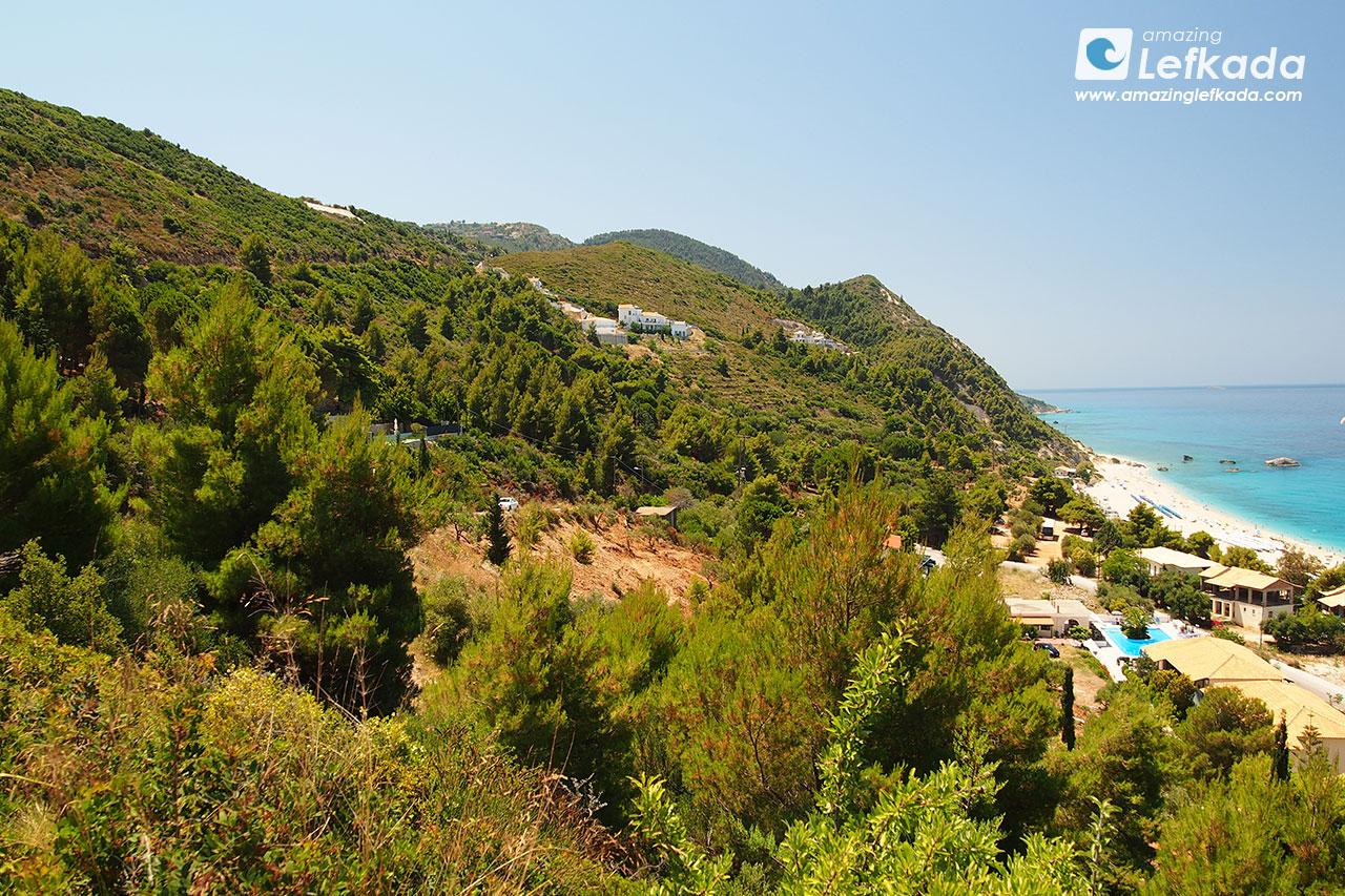 Lefkada island forest