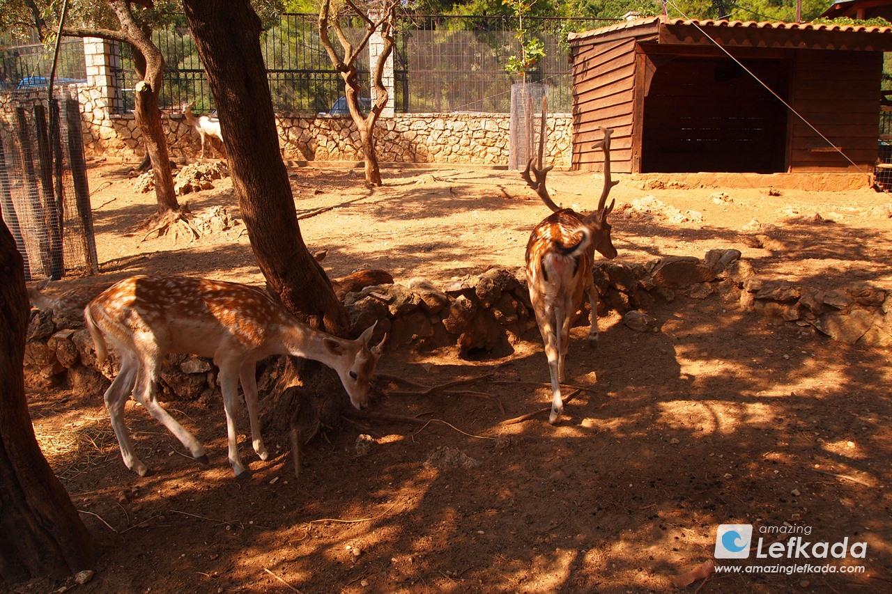 Lefkada Zoo, Faneromeni Monastery